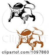 Clipart Black And Brown Tough Bulls 1 Royalty Free Vector Illustration by Vector Tradition SM