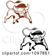 Clipart Black And Brown Tough Bulls 2 Royalty Free Vector Illustration by Vector Tradition SM