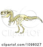 Clipart Tyrannosaurus Rex Dinosaur Skeleton Royalty Free Vector Illustration by visekart #COLLC1098027-0161