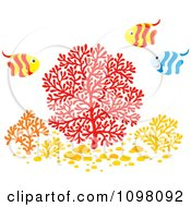 Clipart Striped Fish Over Colorful Corals Royalty Free Vector Illustration