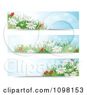 Clipart Three Spring Time Daisy Flower Website Banners Royalty Free Vector Illustration