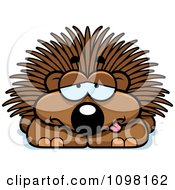 Clipart Sick Porcupine Royalty Free Vector Illustration by Cory Thoman