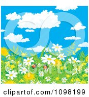 Clipart Background Of Ladybug Pair In Spring Dandelion And Daisy Flowers With A View Of The Sky Royalty Free Vector Illustration by Alex Bannykh
