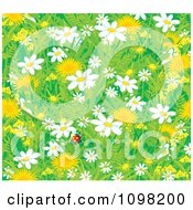 Clipart Background Of A Lone Ladybug With Spring Dandelion And Daisy Flowers Royalty Free Vector Illustration