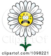 Clipart Scared White Daisy Flower Character Royalty Free Vector Illustration by Cory Thoman