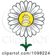 Clipart Angry White Daisy Flower Character Royalty Free Vector Illustration by Cory Thoman