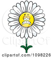 Clipart Depressed White Daisy Flower Character Royalty Free Vector Illustration by Cory Thoman
