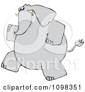 Gray Elephant Running Upright