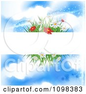 Blank Banner With Spring Flowers And Grass Against A Blue Sky With Clouds