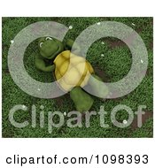 3d Happy Relaxed Tortoise Resting On His Back In Grass With Daisies