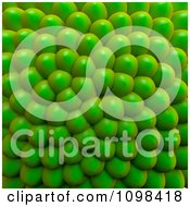 3d Green Cluster Of Seeds Background An Example Of A Fibonnacci Pattern