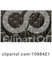 Clipart 3d Sunflower Seeds An Example Of A Fibonnacci Pattern Royalty Free CGI Illustration by Leo Blanchette