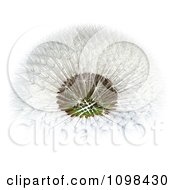 3d Dandelion Seed Head Shown With A Fibonacci Sequence Pattern 4
