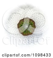 3d Dandelion Seed Head Shown With A Fibonacci Sequence Pattern 3