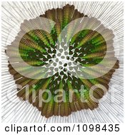 Clipart 3d Dandelion Seed Head Shown With A Fibonacci Sequence Pattern 5 Royalty Free CGI Illustration by Leo Blanchette