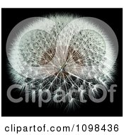 Poster, Art Print Of 3d Dandelion Seed Head With A Fibonacci Sequence Pattern 1
