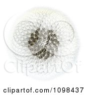 Clipart 3d Dandelion Seed Head Shown With A Fibonacci Sequence Pattern 2 Royalty Free CGI Illustration by Leo Blanchette