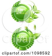 Clipart 3d Shiny 100 Percent Natural Icons With Flowers And Leaves Royalty Free Vector Illustration