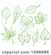 Poster, Art Print Of Green And White Leaves 3