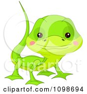 Cute Green Lizard Looking Up