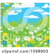 Clipart Wild Daisies And Dandelion Flowers In Spring Growth Under A Blue Cloudy Sky Royalty Free Vector Illustration