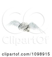 Clipart 3d Winged Brain Flying Royalty Free CGI Illustration