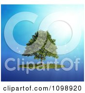 Clipart 3d Lush Tree And A Circle Of Grass Over Blue With Rays Royalty Free CGI Illustration by Mopic