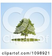 Clipart 3d Lush Tree And A Circle Of Grass Over Blue Royalty Free CGI Illustration by Mopic
