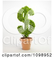 Clipart 3d Dollar Symbol Plant In A Terra Cotta Pot Royalty Free CGI Illustration