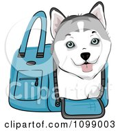 Clipart Happy Siberian Husky Puppy In A Blue Dog Carrier Bag Royalty Free Vector Illustration