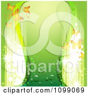 Green Background With Butterflies And Magic Lights
