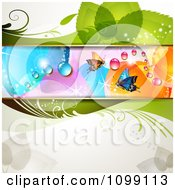 Clipart Floral Background With Butterflies Flowers And Colorful Dew Drops Royalty Free Vector Illustration