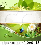Clipart Green Background Of A Ladybug Butterfly Daisy And Foliage With Copyspace Royalty Free Vector Illustration