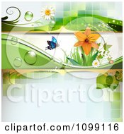 Clipart Background Of A Ladybug And Butterfly With Dew Daisies And A Lily Royalty Free Vector Illustration