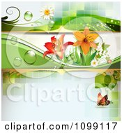 Clipart Background Of A Ladybug And Butterfly With Dew Daisies And Lilies Royalty Free Vector Illustration by merlinul