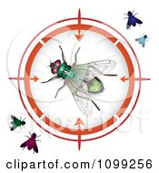 Clipart 3d Colorful Flies Wiith One In A Target Viewer Royalty Free Vector Illustration