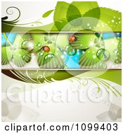 Clipart Background Of Ladybugs On Dewy Shamrocks Royalty Free Vector Illustration