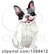 Clipart Cute Black And White French Bulldog Sitting And Smiling Royalty Free Vector Illustration