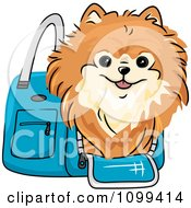 Clipart Happy Red Pomeranian In A Blue Dog Carrier Bag Royalty Free Vector Illustration