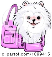 Clipart Happy White Pomeranian In A Pink Dog Carrier Bag Royalty Free Vector Illustration