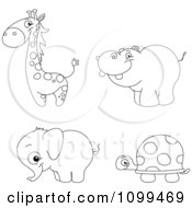 Happy Outlined Cute Baby Giraffe Hippo Elephant And Tortoise