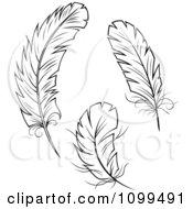 Clipart Three Black And White Feathers Royalty Free Vector Illustration by Vector Tradition SM