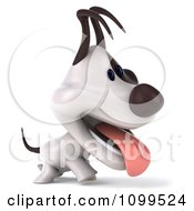 3d Happy Jack Russell Terrier Dog Walking