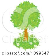 Clipart Lush Tree With Green Foliage And A Patch Of Grass With Wild Daisies Royalty Free Vector Illustration by Alex Bannykh