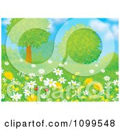 Poster, Art Print Of Pair Of Ladybugs With Wild Daisies Dandelions And Trees On A Spring Day