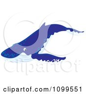 Clipart Happy Blue Humpback Whale Royalty Free Vector Illustration by Alex Bannykh