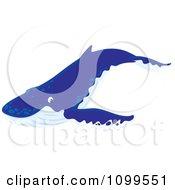 Happy Blue Humpback Whale
