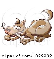 Clipart Happy Brown Dog Playing With A Bone In His Mouth Royalty Free Vector Illustration by Zooco