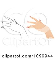 Womans Hand With Manicured Nails In Color And Outlined