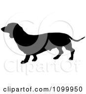 Clipart Black Silhouette Of A Daschund Dog Profile Royalty Free Vector Illustration